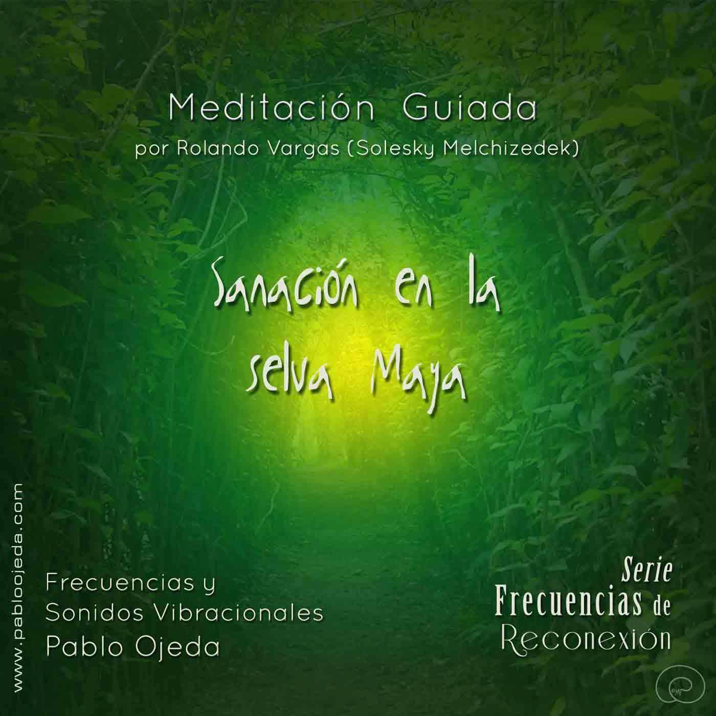 meditacion-selva